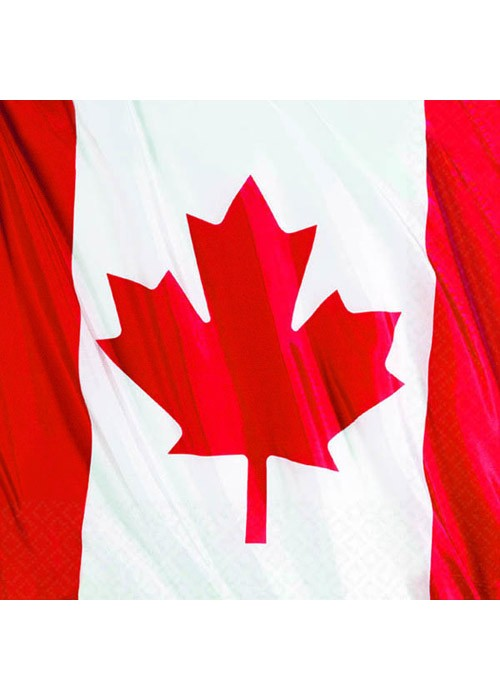 canada_immigration_flag